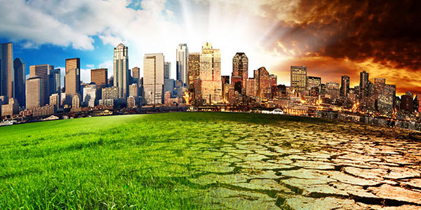 Sustainability for the globe—and your portfolio